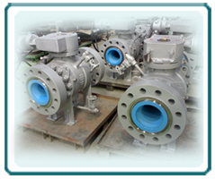 FBE coated Ball Valve Assembly